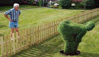 Essa o vizinho não deve ter gostado